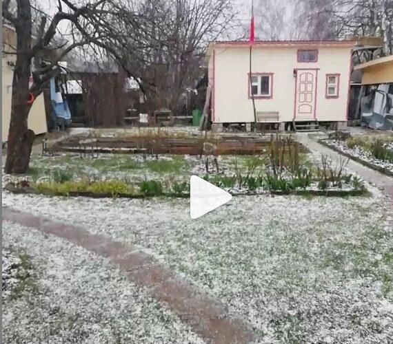 День.Люди.События. Cерпухов. 17 апреля 2020. Светит солнце и идет снег