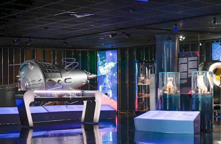 Как провести «Ночь в музее» не выходя из дома