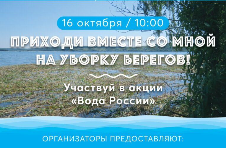 Берега Северского Донца и Белгородского водохранилища очистят волонтеры