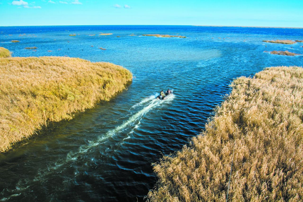 Росводресурсы завершили научно-исследовательские работы по Аграханскому заливу Каспийского моря и реке Терек