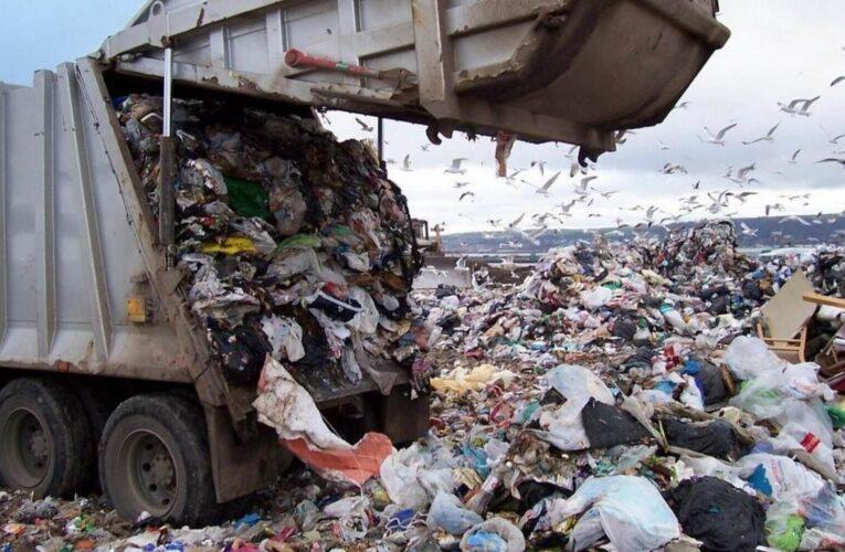 Почему буксует Мусорная реформа. Как сократить налог на мусор и сэкономить на упаковке